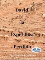 David, La Esperanza Perdida