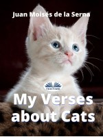 My Verses About Cats