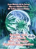Gehirn Und Pandemie: Eine Aktuelle Betrachtungsweise