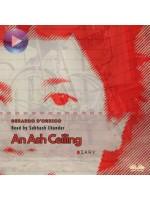 An Ash Ceiling-diary