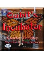 Qubit's Incubator