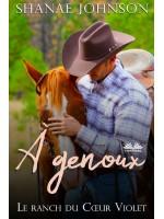 À Genoux-Une Douce Histoire D'Amour Et De Mariage Arrangé