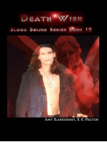 Death Wish (Blood Bound Book 12)