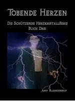 Tobende Herzen-Der Schützende Herzkristall Buch 3
