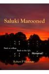 Saluki Marooned